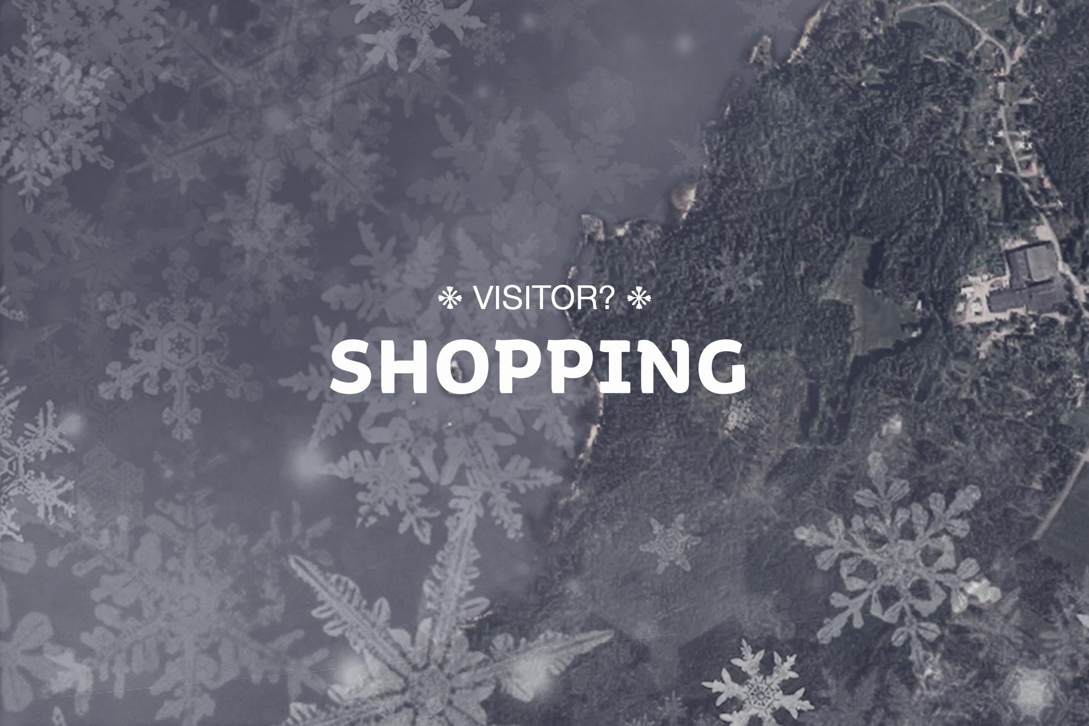 Besökare i området, shopping i området